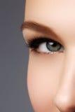 Makroschuß des schönen Auges der Frau mit extrem langem eyelashe stockfotografie