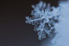 Makroschuß des Schnee-Flocken-Kristalles Lizenzfreies Stockbild