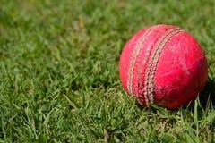 Makroschuß eines alten Kricketballs auf einem Gras lizenzfreie stockfotografie