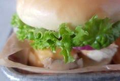 Makroschuß eines belegten Brots mit Hühnerfleisch Stockfotografie