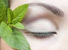 Makroschuß eines weiblichen Auges und der frischen Minze Lizenzfreie Stockbilder