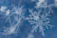 Makroschuß von gefrorenen Schneeflocken lizenzfreies stockfoto
