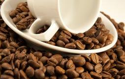 Makroschuß von Porzellancup auf gebratenen Kaffeebohnen Stockfoto