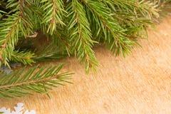 Makroschuß von Weihnachtsbaumasten mit grünen Nadeln Stockfotografie