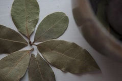 Makroschuß der Lorbeerblätter formte als Blume mit einem Mörser im Hintergrund Stockfotografie