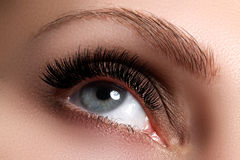 Makroskott av det härliga ögat för kvinna` s med långa ögonfrans arkivfoto
