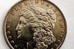 Makroskott av det Morgan Dollar myntet Arkivbilder