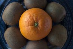 Makroskott av en apelsin som omges av kiwier arkivbilder