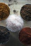 Makroskott av en sammansättning av fem kryddor Arkivfoto