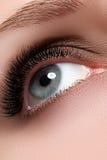 Makroskott av kvinnas härliga öga med extremt lång eyelashe Arkivbilder