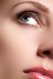 Makroskott av kvinnas härliga öga med extremt långa ögonfrans Sexig sikt, sinnlig blick Kvinnligt öga med långa ögonfrans Royaltyfri Fotografi