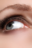 Makroskott av kvinnas härliga öga med extremt långa ögonfrans Sexig sikt, sinnlig blick Kvinnligt öga med långa ögonfrans Arkivfoto