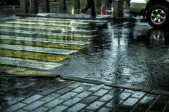 Makroskott av våt kullersten för stadsgatagolv under regn i Europa arkivbilder