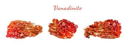 Makroskytte av den naturliga gemstonen Rå mineralisk vanadinite, Marocko Isolerat objekt på en vit bakgrund Arkivbild