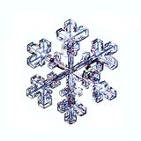 Makrostück der natürlichen Kristallschneeflocke Eis Stockfotografie