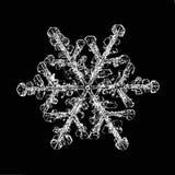 Makrostück der natürlichen Kristallschneeflocke Eis Stockbilder