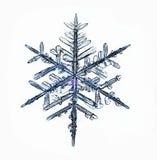 Makrostück der natürlichen Kristallschneeflocke Eis Stockfoto