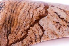 Makrosteinminerallandschaftsjaspis auf einem weißen Hintergrund Lizenzfreie Stockbilder