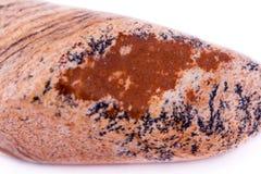 Makrosteinminerallandschaftsjaspis auf einem weißen Hintergrund Lizenzfreies Stockfoto