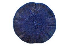 Makrosteinminerallasurstein auf einem weißen Hintergrund stockfotos