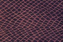 Makrotextur av våg av läder Royaltyfria Foton