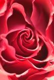 Makrotextur av vibrerande rött kulört steg Royaltyfria Foton
