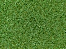 Makrotextur - hushåll - grön scrubbie Fotografering för Bildbyråer