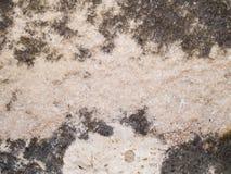 Makrotextur - sten - fläckig rock Arkivbilder