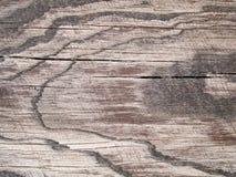 Makrotextur - trä - korn arkivbilder