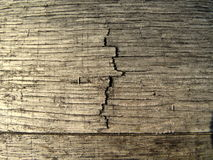 Makrotexturfotografi av sprickan i den Wood trumman royaltyfria bilder