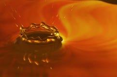 Makrovattenliten droppe Royaltyfri Fotografi