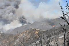 Makthusbranden ~ 2013 ~ enormt putsar av rök Arkivbild