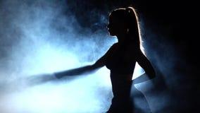 Maktkaratetekniker _ silhouette Panelljus arkivfilmer