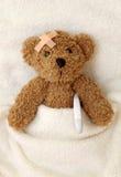 Mal do urso da peluche Foto de Stock Royalty Free
