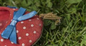 Mal på skor i grönt gräs Arkivbild