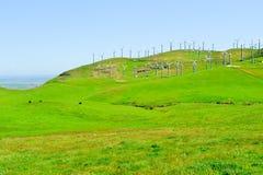 mal wind Royaltyfri Foto
