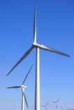 mal wind Royaltyfri Fotografi