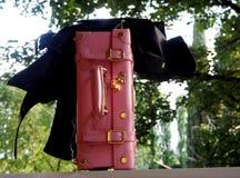 Mala de viagem cor-de-rosa com revestimento preto Fotos de Stock