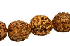 Mala di Japa (perle di preghiera) fatto del rudraksha isolato immagini stock libere da diritti