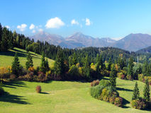 Mala Fatra and forests above Jasenova village. Summer view of meadows and forests above Jasenova village with hills of Mala Fatra mountain range in the stock image