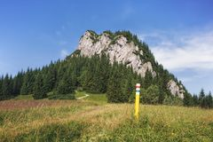 Mala Fatra National Park, Slowakije Royalty-vrije Stock Foto's