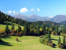 Mala Fatra och skogar ovanför den Jasenova byn Fotografering för Bildbyråer