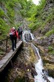 In Mala Fatra wandern, Slowakei Stockfotografie