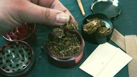 Mala hierba de la marijuana en mano femenina Brotes de la amoladora y de la marijuana en el fondo metrajes