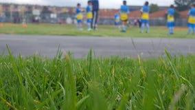 Mala hierba del patio trasero del equipo de Futbol Imágenes de archivo libres de regalías