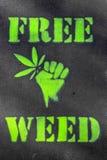 Mala hierba libre Imagen de archivo