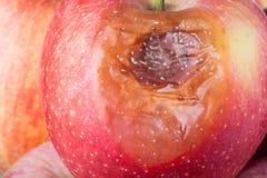 Mala manzana fotos de archivo