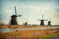 Mala nätverket på Kinderdijk-Elshout Royaltyfri Fotografi