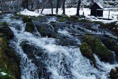 mala på vatten Arkivfoto