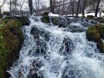 mala på vatten Fotografering för Bildbyråer